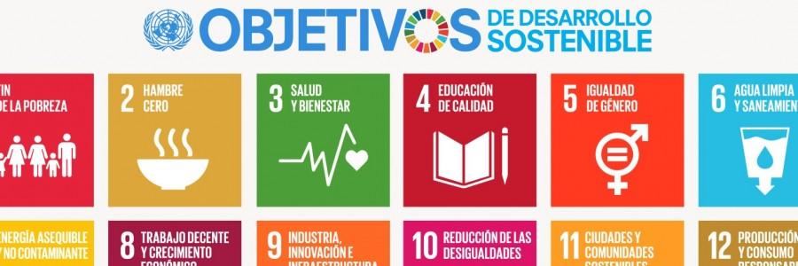 ¿Hacia dónde va el mundo en la búsqueda de la sustentabilidad global?