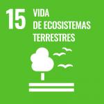 ods 15 ecosistemas terrestres